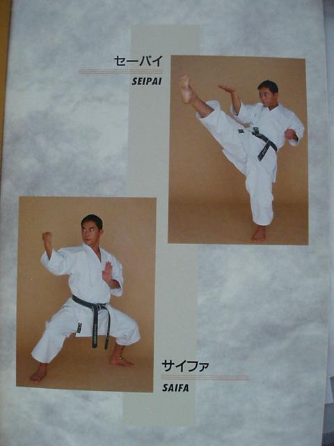 070729-karate-kata-007.jpg